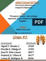 Presupuesto Empresarial RICA