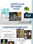 classificaodosseresvivos-110618205205-phpapp01
