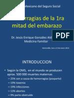 Hemorragias de La 1ra Mitad Del Embarazo