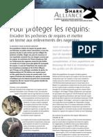 Shark Alliance - Pour Proteger Les Requins-French