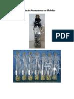 Modelos de Invitaciones en Botellas