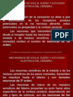 MECANISMOS DE VIGILIA, SUEÑO Y ACTIVIDAD ELECTRICA DEL CEREBRO [Autoguardado]