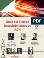 Linea Del Tiempo Bioquimica 2