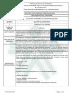 auditoria informatica conceptualizacion.pdf