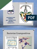 2b Bacterias Grampositivas