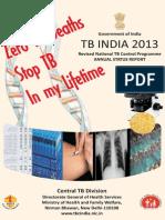 TB India 2013