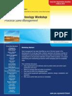 2013 Dubai Sand Control Brochure