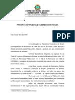 Art Principios Institucionais Da Dp1