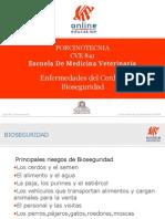 Enfermedades Del Cerdo y Bioseguridad