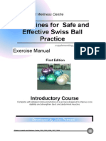 Swiss Ball Manual Colour