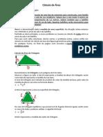 Cálculo de Área.docx