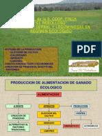 I+D Cultivo de Cereal y Leguminosas en Ecologico