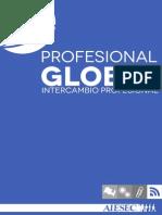 Portafolio Information technology