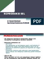 Reproduksi Sel 2