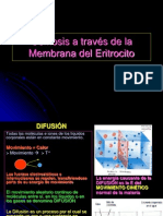 ENFERMERÍA Unid 1 sem 1 Práctica osmosis memb Eritrocito