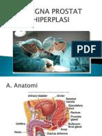 Benign Prostat Hiperplasi 2
