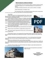 Chereji Flavius Casian - Stilurile naționale în arhitectura Orădeană