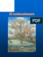 Tema 2 Melocotonero (1)