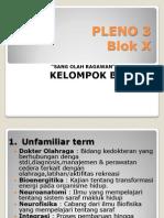 PLENO 3 RAhel Tutor 1
