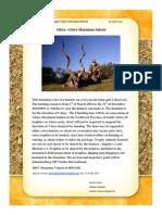 Africa Hunt Auction Item