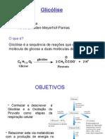 Aula 10 -Metabolismo Da Glicose