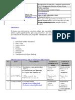 Syllabus IT111 Otono2009