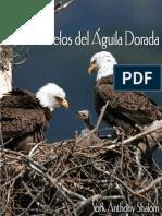 Polluelos Del Aguila Dorada