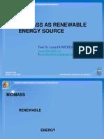 Curs Biofuels
