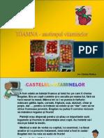 Castelul Vitamin El Or