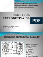 9-Reproducao Das Aves