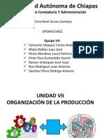 Unidad VII - Oraganización De La Producción