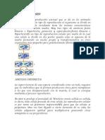 AMITOSIS, Amitosis Indirecta, Cariosinesis, Gemacion, Espurolacion