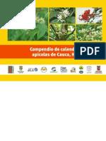 Calendarios_baja CAUCA 2012