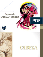 Repaso Anato Cabeza y Cuello