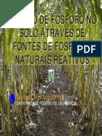 Work-fosfato Natural 36