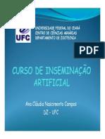curso IA Ana Cláudia