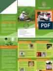 Laboratorio_Insectos.pdf