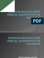 TECNICAS MOLECULARES PARA EL DIAGNÓSTICO DE PARASITOS