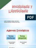 Hymenolipis Spp