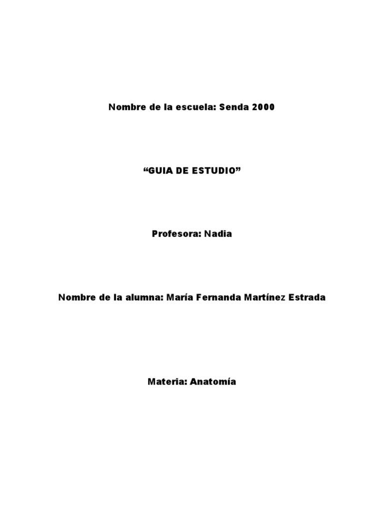 guia de anatomia.docx