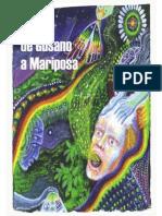 De Gusano a Mariposa (Cons-Pirados- Editora)