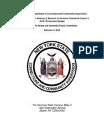 DOCCS Final Budget Testimony