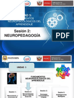 S3-U3 NEUROPEDAGOGIA