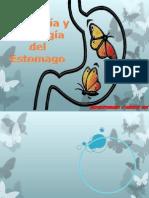 Fisiologia y Embrio de El Estomago
