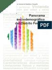 panorama_sociodemografico_df.pdf