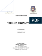 46259969 Brand Promotion