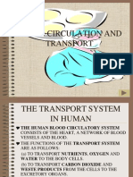 18229256 Blood Circulation and Transport