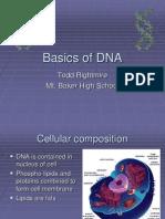 Basics of DNA