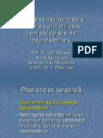 Neuro Plastic It Ate