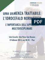 Programma Pisa